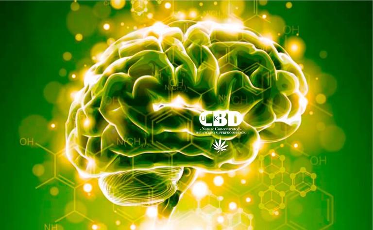 La cannabis medicale (CBD) può migliorare la qualità della vita dei malati diParkinson?